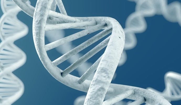 Gene editing research for precision medicine