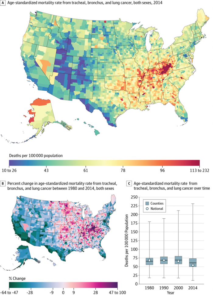 Lung Cancer Mortality Disparities from 1980-2014