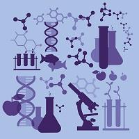 Precision medicine and personalized medicine in healthcare organizations