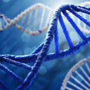 Researchers Map Disease Origins for Precision Medicine Progress