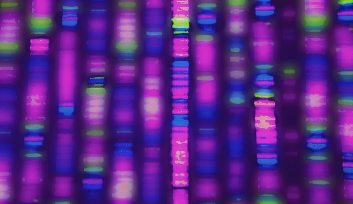 personalized medicine essay Read this essay on personalized medicine come browse our large digital warehouse of free sample essays get the knowledge you need in order to pass your classes and more only at termpaperwarehousecom.